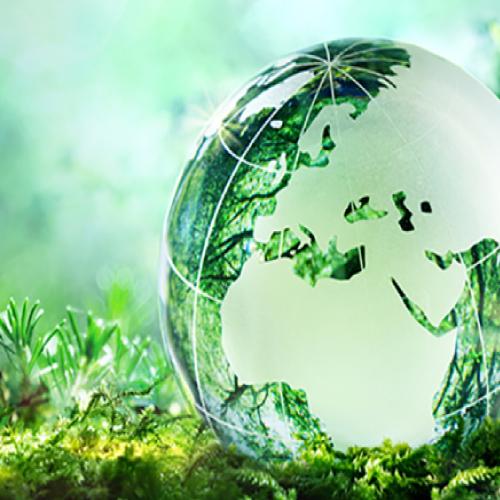 Développement durable et Certifications Imprim'Vert, FSC et PEFC